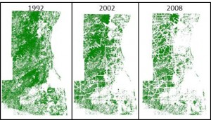 MSES Land Change Analysis showing decreases in moose habitat (green) from 1992 to 2008.