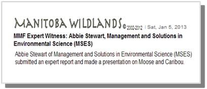 web expert ac environnement